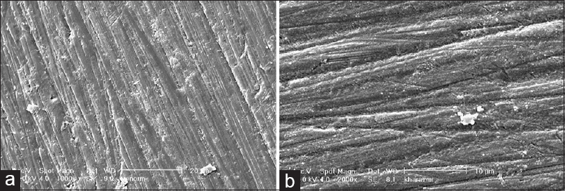 Figure 5: SEM image of the polished enamel which was exposed to Ironorm iron drop for 5 min: (a) 1000×; (b) 2000×