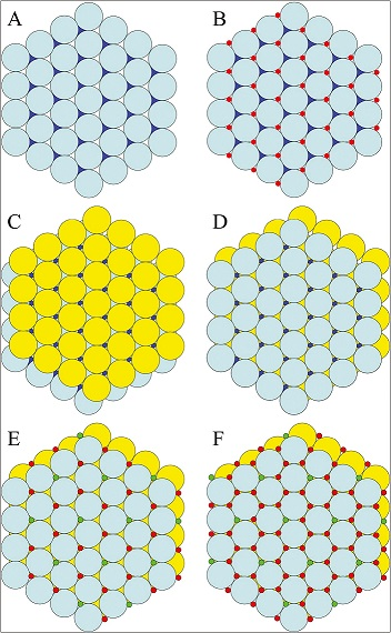 "Figure 2: Building calcium hydroxyapatite. (A) Phosphate ions (PO<sub>4</sub><sup>3–</sup>) can be imagined as single layer (cyan layer, ""A"") of billiard balls confined by a hexagonal rack. In the hexagonal close-packed layer of phosphate spheres, there are twice as many interstices as spheres. Half of the spaces are leftward pointing (white); half are rightward pointing (blue). (B) All of the leftward-pointing interstices are filled with smaller spheres (red), representing Ca<sup>2+</sup> ions (designated Ca2). (C) A second layer of billiard balls (yellow, ""B"") will not stack directly on top of the A layer, but rests on the depressions over the leftward-pointing interstices filled with Ca2 ions. (D) The third layer of phosphate ions (cyan) stacks directly on top of the original A layer. Because we have not added the hydroxyl ions or most of the Ca<sup>2+</sup> ions, it is clear that the rightward-pointing interstices of the original A layer are still visible and that the ions occupying these spaces will form a column extending up the entire height of the crystal. (E) The column interstices are occupied by Ca<sup>2+</sup> (designated Ca1) and OH<sup>–</sup> ions in a ratio of 2:1. The column interstices are filled so that each particular column is filled either with OH<sup>–</sup> or Ca<sup>2+</sup> ions, and not a mixture, so there are columns of Ca1 and OH<sup>–</sup> ions running from top to bottom throughout the crystal. (F) All of the interstices of the nearly close-packed hexagonally arranged PO<sub>4</sub><sup>3–</sup> ions are filled in hydroxyapatite. Ca2 ions occupy the leftward-pointing interstices of the A layers and the rightward-pointing interstices of the B layers, which are capped by phosphate ions above and below"